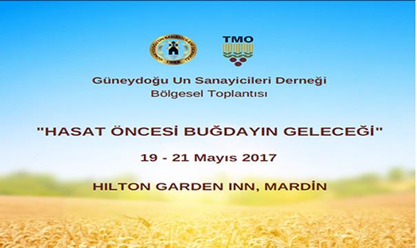 Genişletilmiş Sektör Toplantısı, Mardin-19-21 Mayıs 2017